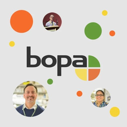 BOPA logo - website case study thumbnail